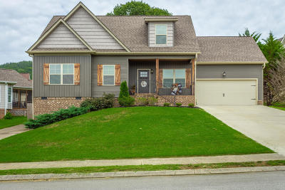 Ringgold Single Family Home For Sale: 171 Canary Cir