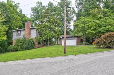 Rhea County Single Family Home For Sale: 189 Timber Dr