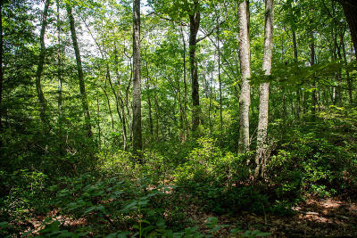 Residential Lots & Land For Sale: 1 Eagle Bluff