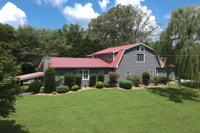 Etowah Single Family Home For Sale: 415 County Road 527 #527
