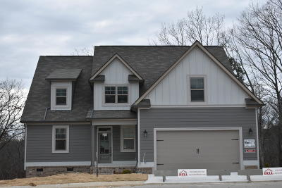 Ooltewah Single Family Home For Sale: 6590 Frankfurt Rd #1510