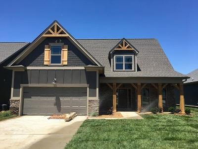 Ooltewah Single Family Home For Sale: 7447 White Pine Dr #65