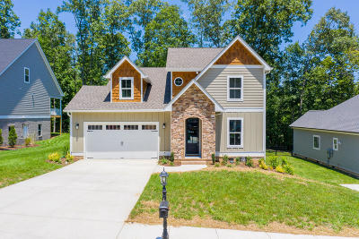 Ooltewah Single Family Home For Sale: 9423 Silver Stone Ln #16
