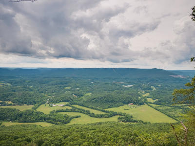Lookout Mountain Residential Lots & Land For Sale: 83 Brow Wood Ln #20