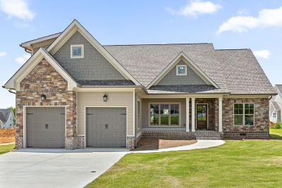Chickamauga Single Family Home For Sale: 79 Fallen Leaf Dr #105