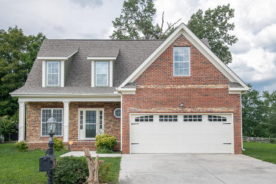 Ooltewah Single Family Home For Sale: 8531 Lexie Ln