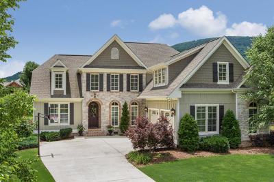Chattanooga Single Family Home For Sale: 539 Osprey Way
