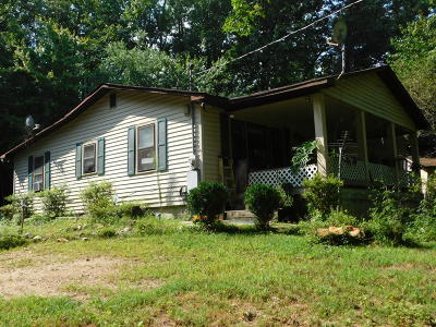 Ringgold Single Family Home For Sale: 124 Roach Hollow Rd
