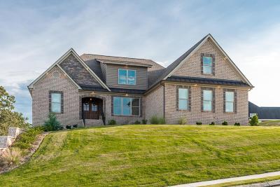 Ringgold Single Family Home For Sale: 170 Asheville Dr
