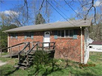 Ringgold Single Family Home For Sale: 5283 Highway 41