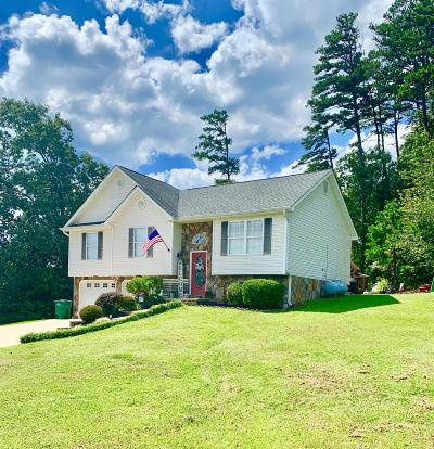 Ringgold Single Family Home For Sale: 25 Bent Tree Dr