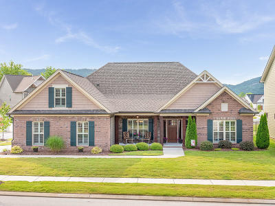 Ooltewah Single Family Home Contingent: 8594 River Birch Loop