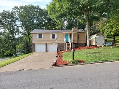 Ringgold Single Family Home For Sale: 17 Smokewood Ln
