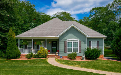 Signal Mountain Single Family Home For Sale: 3914 Anderson Pike