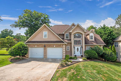 Ringgold Single Family Home For Sale: 320 Blue Jay Pkwy