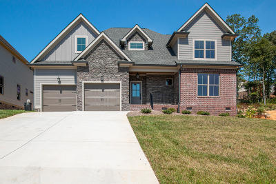 Ooltewah Single Family Home For Sale: 2384 Weeping Willow Dr