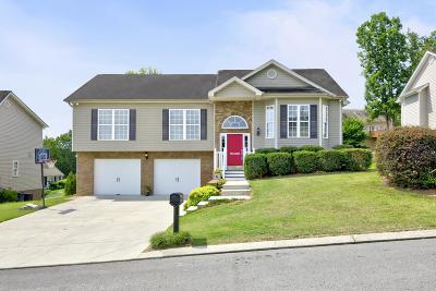 Soddy Daisy Single Family Home For Sale: 1032 Ryan Ridge