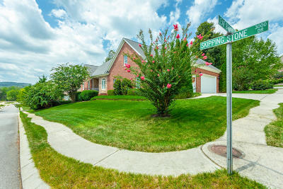 Apison Single Family Home For Sale: 3011 Skipping Stone Dr