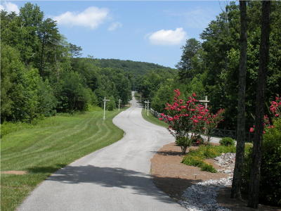 Rising Fawn Residential Lots & Land For Sale: Shivas North Dr #64