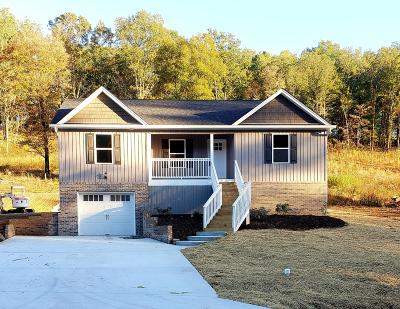 Soddy Daisy Single Family Home For Sale: 12170 Old Dayton Pike #1