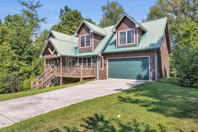 Single Family Home For Sale: 196 Mountain View Cir