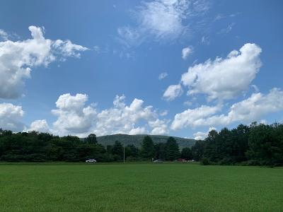 Residential Lots & Land For Sale: Stone Cave Rd