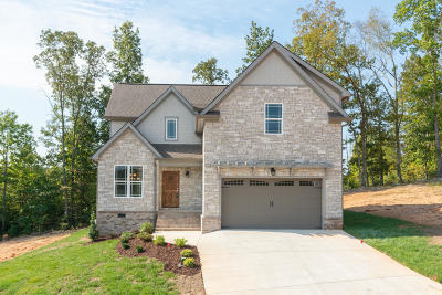 Ooltewah Single Family Home For Sale: 9202 White Ash Dr