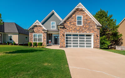 Ooltewah Single Family Home For Sale: 8591 Skybrook Dr