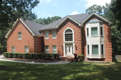 Chattanooga Single Family Home For Sale: 725 Morning Shadows Dr
