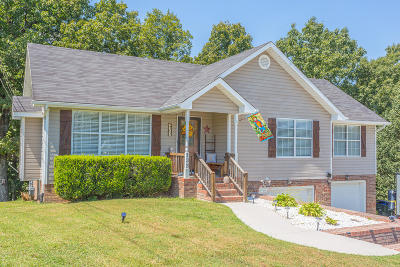 Ringgold Single Family Home For Sale: 133 Shady Brook Ln