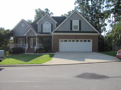 Ringgold Single Family Home For Sale: 377 Blue Jay Pkwy