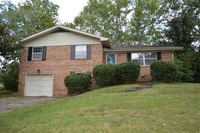 Chattanooga Single Family Home For Sale: 2502 Jenkins Rd