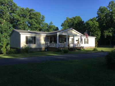 Van Buren County Single Family Home For Sale: 23831 Sr 30