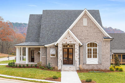 Ooltewah Single Family Home For Sale: 2361 Weeping Willow Dr