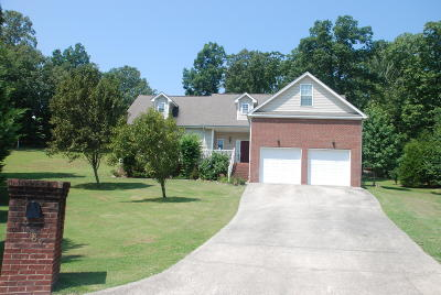Ooltewah Single Family Home For Sale: 7187 Stetson Ln