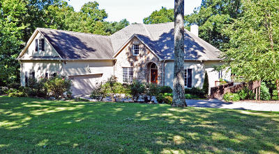 Lookout Mountain Single Family Home For Sale: 11 Wood Hollow Rd