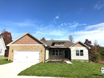 Cleveland Single Family Home For Sale: 250 Stonebridge Ln