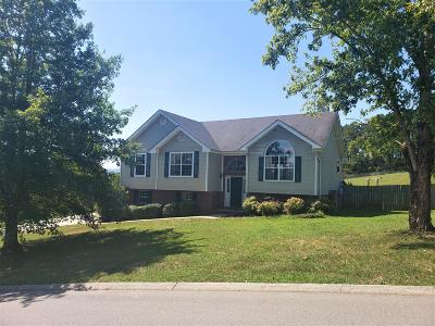 Ringgold Single Family Home For Sale: 19 Spring Meadows Dr