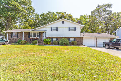 Fort Oglethorpe Single Family Home For Sale: 107 Semmes Dr