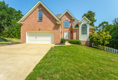 Chattanooga Single Family Home For Sale: 8945 Chaffin Ln