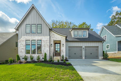 Ooltewah Single Family Home For Sale: 9272 White Ash Dr #6