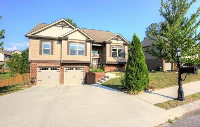 Hixson Single Family Home For Sale: 8380 Midwestern Dr