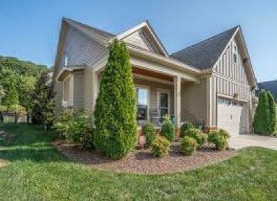 Chattanooga Single Family Home For Sale: 1134 Saddlebrook Dr