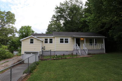 Chattanooga Single Family Home For Sale: 538 Lupton Dr