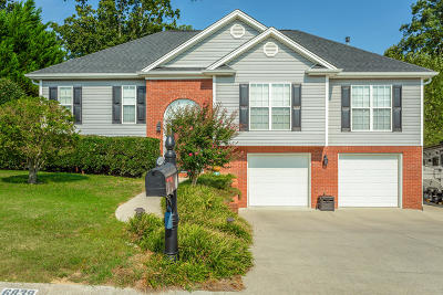 Ooltewah Single Family Home For Sale: 6839 Bucksland Dr