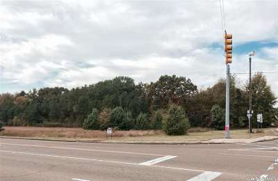 Commercial Lots & Land Active-Extended: Pleasant Plains Extended