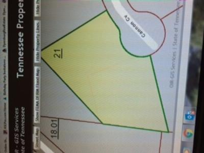 Dyersburg Residential Lots & Land For Sale: Lot 21 Cannon