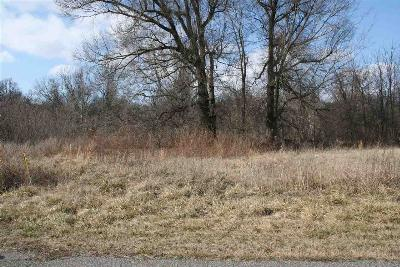 Dyersburg Residential Lots & Land For Sale: Lot 4 Chickasaw Bluff Dr