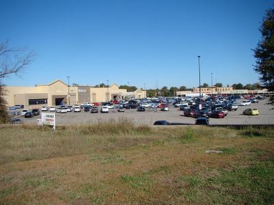 Commercial Lots & Land For Sale: Hwy 45 And Denton Fly Road
