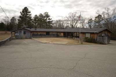 Hardeman County Single Family Home For Sale: 28855 Highway 18 N